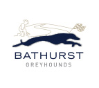 Bathurst Greyhounds