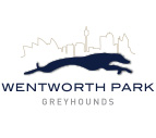 Wentworth Park Greyhounds